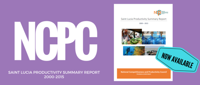 Productivity Summary Report